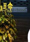 《这就是命》笑破4000万 王迅正面怼曾志伟片...