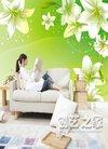 十大热门电视墙壁纸绿色排行榜_盛君网
