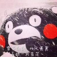 日本的熊本熊表情包 搞笑熊本熊表情带字图片